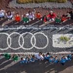 Audi Habita – playfully learning...