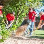 Freiwilligentag der AUDI AG: Gemeinsam...