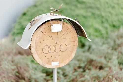 Audi-Azubis mit Herz für Insekten
