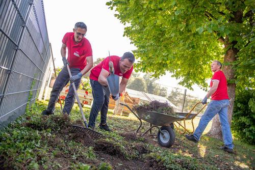 Audi Volunteer Day 2021, digital and analog: employees help in Ingolstadt and Neckarsulm