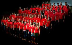 Audi Jugendchorakademie sucht neue Stimmen