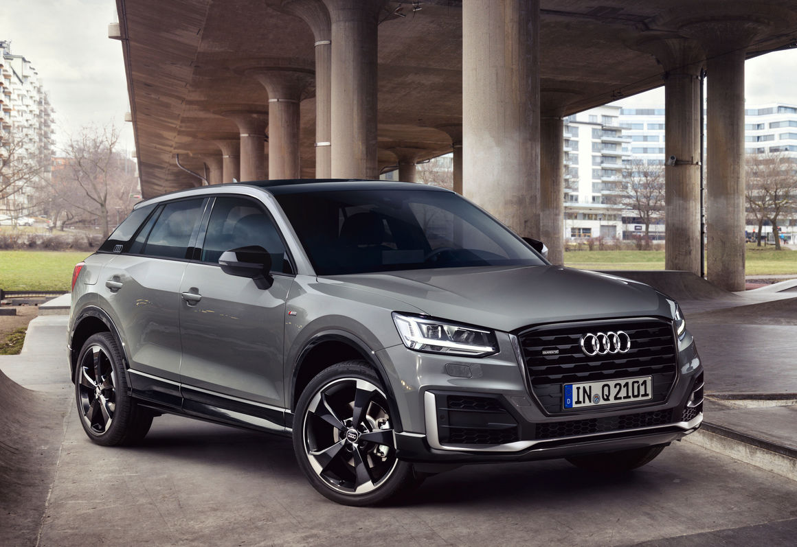Audi Q2 for Dog Owners