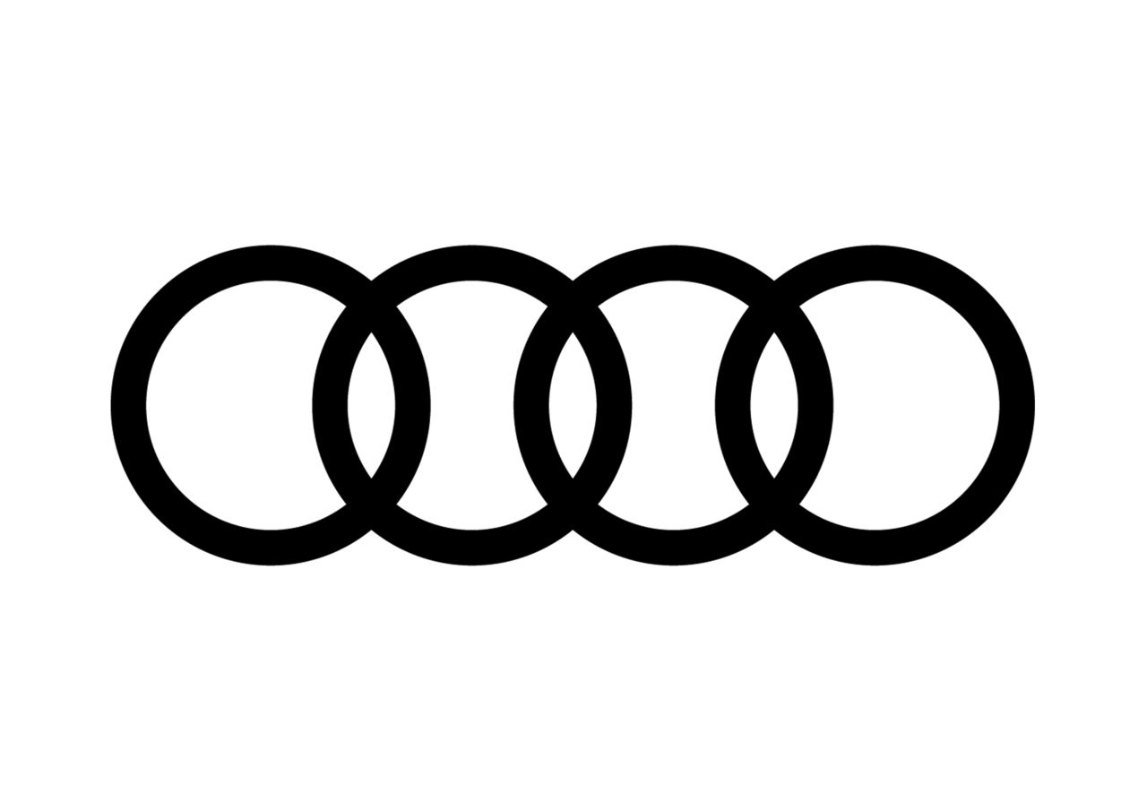 Audi: partner of international sport