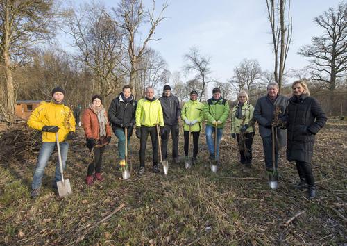 Audi spendet 3.000 Bäumchen für Eichenwald