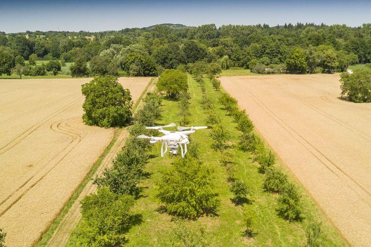 Audi Umweltstiftung fördert Drohnenflüge zur Vermessung und dem Erhalt von Streuobstwiesen
