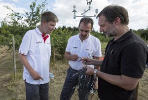 """""""Talking Trees"""": Das Eichenwaldprojekt der  Audi Stiftung für Umwelt geht online"""