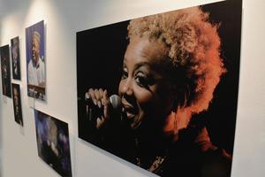 """Ausstellung zeigt Fotos von """"Jazz im Audi Forum Ingolstadt"""""""