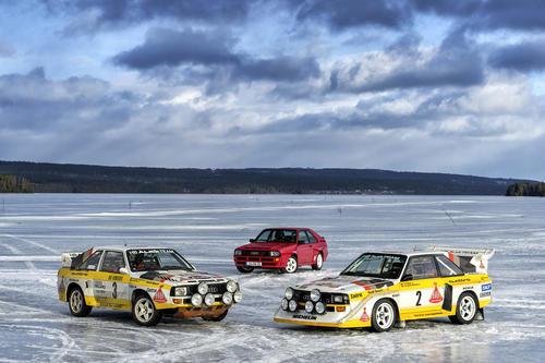 Audi Sport quattro Rallye, Audi Sport quattro, Audi Sport quattro S1