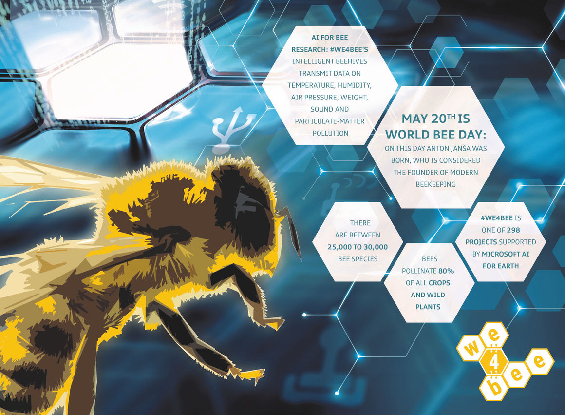AI for bee research: we4bee becomes part of the Microsoft 'AI for Earth' program