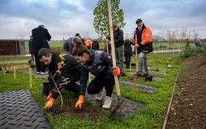 Audi und Stadt Ingolstadt: Gemeinsame Baumpflanzaktion auf Landesgartenschau Gelände