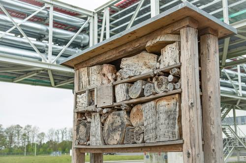 Audi startet Umweltprogramm Mission:Zero: Naturnahe Lebensräume an den Audi-Standorten